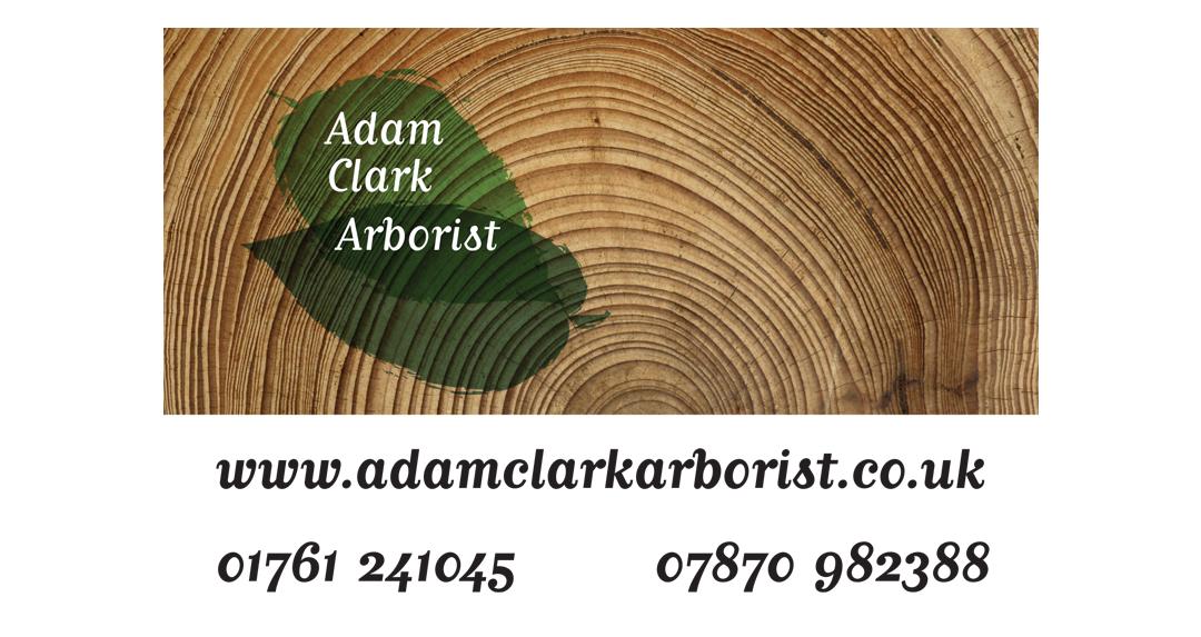 Adam Clark Sign