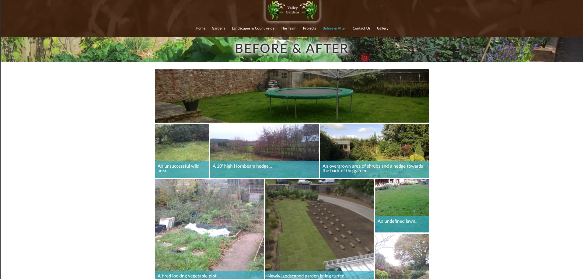 Valley Gardens Before and After page